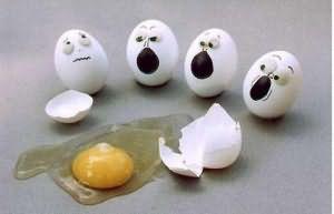 К чему снятся яйца куриные Сонник про яйца куриные