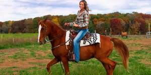 кататься верхом на лошади во сне