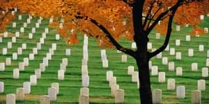 Сонник кладбище долеке огонь