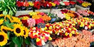 сонник покупать цветы