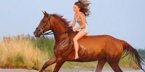 скакать на рыжей лошади