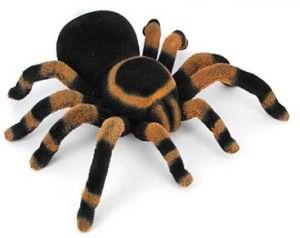 К чему снятся пауки и паутина много