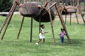 К чему снятся майские жуки много