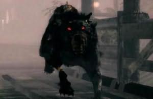 Сонник большая черная собака