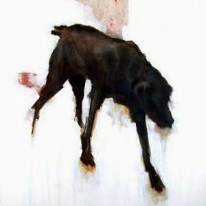укусила черная собака во сне