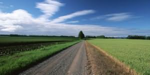 Дорога сонник миллера