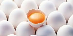 Куриные яйца во сне для женщины