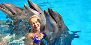 Видеть дельфина во сне женщине
