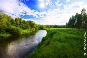 Сонник большая река
