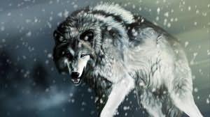Волк во сне к чему снится женщине